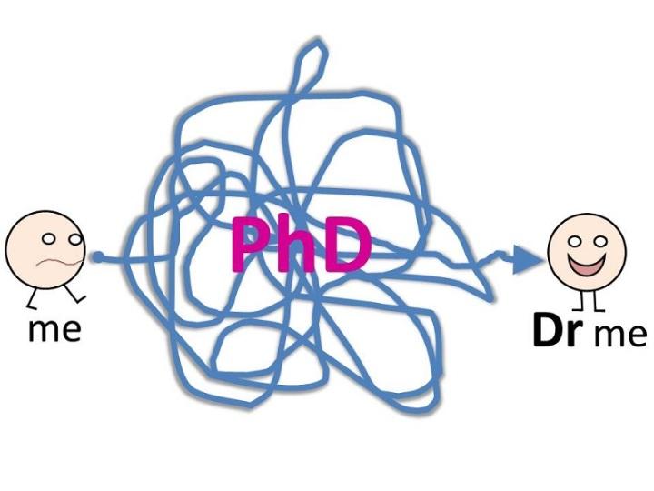 PhD-1